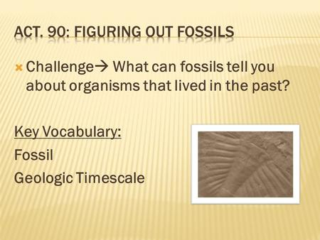  Challenge  What can fossils tell you about organisms that lived in the past? Key Vocabulary: Fossil Geologic Timescale.