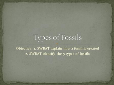 Objective: 1. SWBAT explain how a fossil is created 2. SWBAT identify the 5 types of fossils.