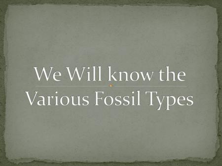 A Fossil is the preserved remains of animals or plants from an earlier era in rock or other geological deposit, often in a petrified state. There are.