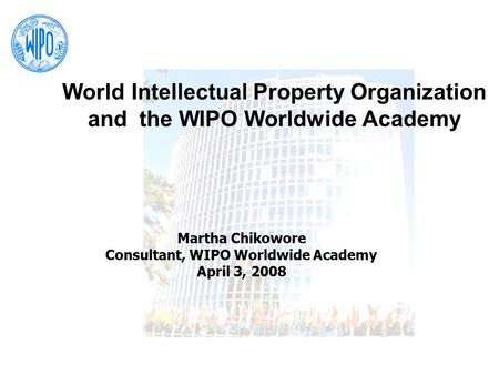 Consultant, WIPO Worldwide Academy