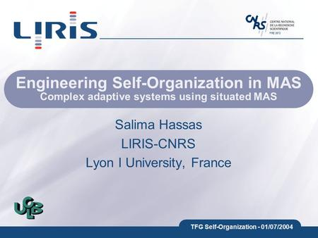 FRE 2672 TFG Self-Organization - 01/07/2004 Engineering Self-Organization in MAS Complex adaptive systems using situated MAS Salima Hassas LIRIS-CNRS Lyon.