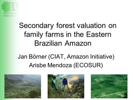LBA 17-19.11.08, Manaus Jan Börner (CIAT, Amazon Initiative) Arisbe Mendoza (ECOSUR) Secondary forest valuation on family farms in the Eastern Brazilian.