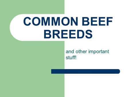 COMMON BEEF BREEDS and other important stuff! WHAT IS A BREED? A breed consists of animals which have been selected for certain characteristics and which.