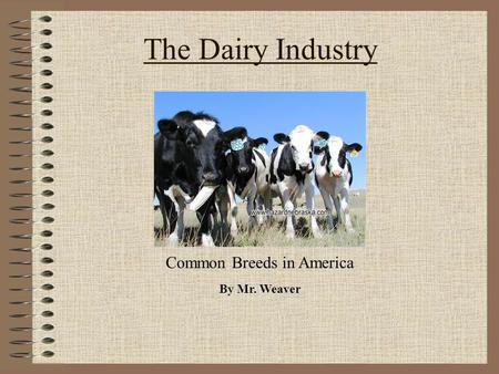The Dairy Industry By Mr. Weaver Common Breeds in America.