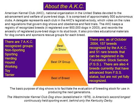 The basic purpose of dog shows is to facilitate the evaluation of breeding stock for use in producing the next generations. About the A.K.C. The Westminster.