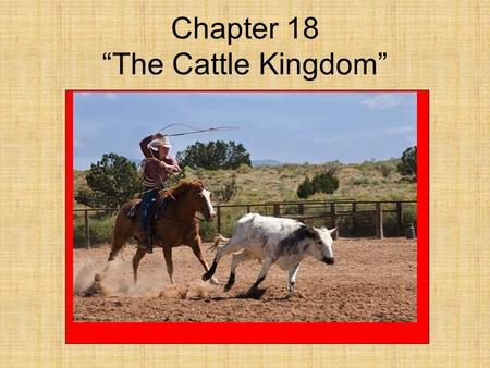 "Chapter 18 ""The Cattle Kingdom"" *The cattle first brought to America arrived on the ships of Spanish explorers in the 1500's. *These Spanish cattle were."