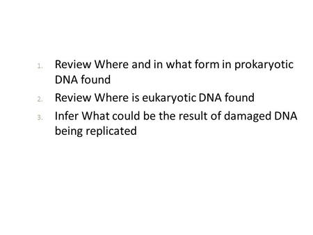 Review Where and in what form in prokaryotic  DNA found