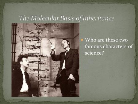 Who are these two famous characters of science?. Mendel (1865): Inheritance.