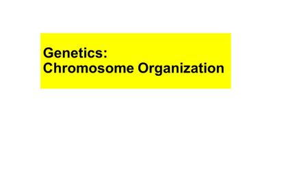 Genetics: Chromosome Organization. Chromosomes: Structures that contain the genetic material (DNA) Genome – complete set of genetic material in a particular.