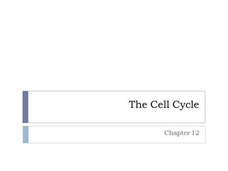 The Cell Cycle Chapter 12. When do cells divide?  Reproduction  Replacement of damaged cells  Growth of new cells  In replacement and growth cell.