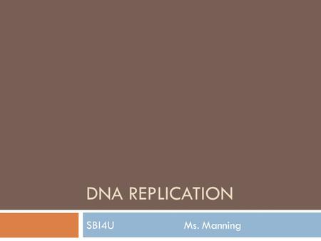 DNA REPLICATION SBI4U Ms. Manning. DNA Replication  Produces two identical copies of the chromosome during S phase of interphase  Catalyzed by many.