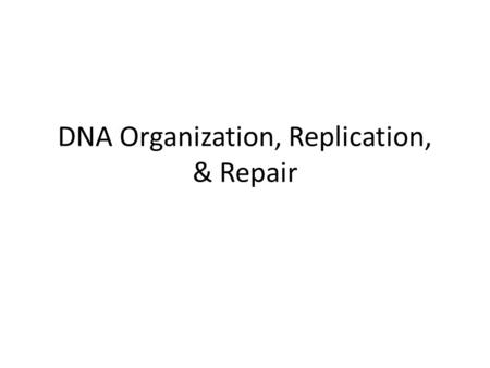 DNA Organization, Replication, & Repair. Model for the structure of the nucleosome.