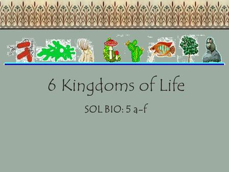 6 Kingdoms of Life SOL BIO: 5 a-f. Students will investigate and understand life functions of archaebacteria, eubacteria, protists, fungi, plants, and.