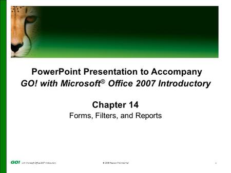 With Microsoft Office 2007 Introductory© 2008 Pearson Prentice Hall1 PowerPoint Presentation to Accompany GO! with Microsoft ® Office 2007 Introductory.