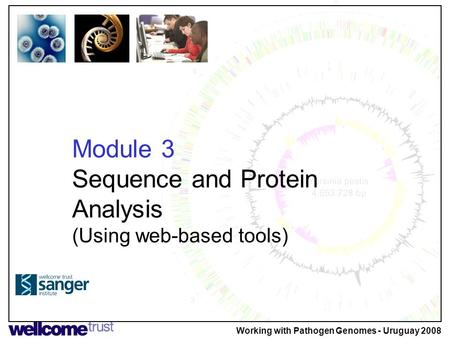 Module 3 Sequence and Protein Analysis (Using web-based tools) Working with Pathogen Genomes - Uruguay 2008.
