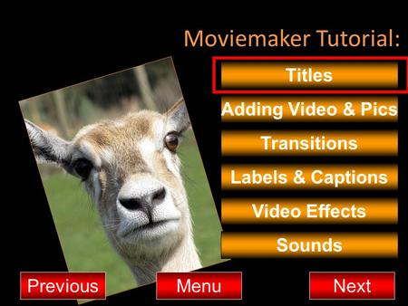 Moviemaker Tutorial: Titles Adding Video & Pics Transitions MenuNextPrevious Video Effects Sounds Labels & Captions.