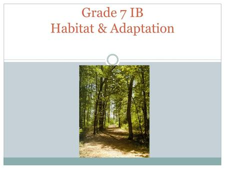 Grade 7 IB Habitat & Adaptation. Habitat The environment in which a specific species lives in. Example : Canadian beavers live in the wetlands and lakes.
