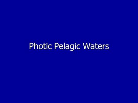 Photic Pelagic Waters I. Location A. From surface to 200m (average) B. Where photosynthesis takes place.