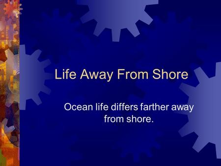 Life Away From Shore Ocean life differs farther away from shore.