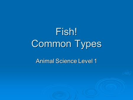 Fish! Common Types Animal Science Level 1. Unit Map: Follow Along in your packet WHAT ARE YOU LEARNING?   AS.05.01- ID essential nutrients   AS.06.01-