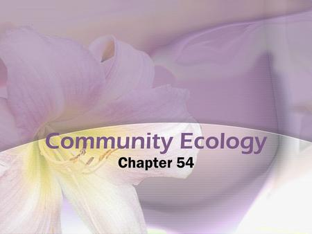 Community Ecology Chapter 54. Interspecific Interactions Competition --/-- Competitive exclusion Ecological Niches (Habitat-address; niche- profession)