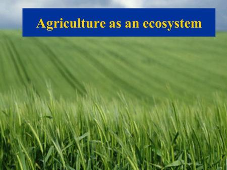 Agriculture as an ecosystem. Great diversity in Natural habitats.