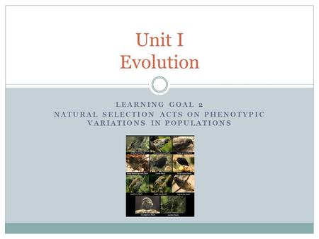 LEARNING GOAL 2 NATURAL SELECTION ACTS ON PHENOTYPIC VARIATIONS IN POPULATIONS Unit I Evolution.