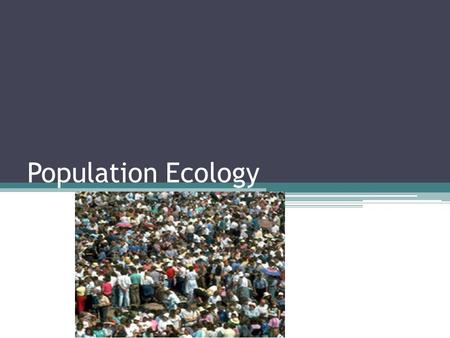 Population Ecology. Life takes place in populations Population ▫Group of individuals of same species in same area at same time  Rely on same resources.