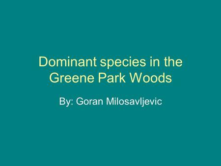 Dominant species in the Greene Park Woods By: Goran Milosavljevic.