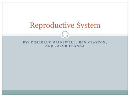 BY: KIMBERLY GLIDEWELL, BEN CLAYTON, AND JACOB FRANKA Reproductive System.
