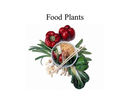 Food Plants. Modern Day Inuit - Greenland Contemporary Hunter-Gatherers The San Bushmen.