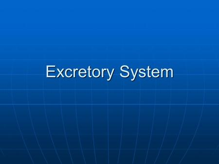 Excretory System. Purpose Remove metabolic waste from the body. Remove metabolic waste from the body.