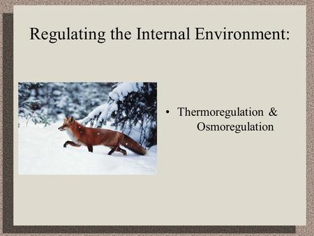 Regulating the Internal Environment: Thermoregulation & Osmoregulation.
