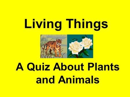 Living Things A Quiz About Plants and Animals. What are living things made from?