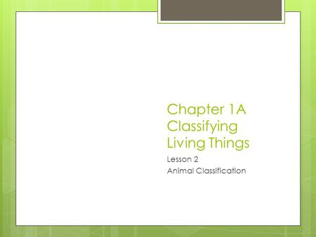 Chapter 1A Classifying Living Things Lesson 2 Animal Classification.