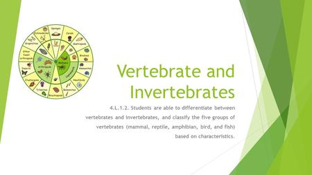 Vertebrate and Invertebrates 4.L.1.2. Students are able to differentiate between vertebrates and invertebrates, and classify the five groups of vertebrates.