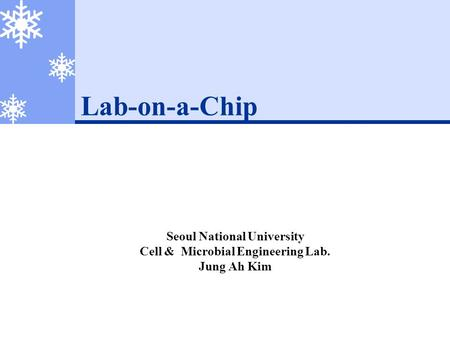 Lab-on-a-Chip Seoul National University Cell & Microbial Engineering Lab. Jung Ah Kim.