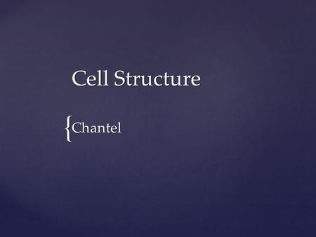 { Cell Structure Chantel.  Cells are the fundamental units of all plant and animal tissues.  Cells are produced by the division of preexisting cells.