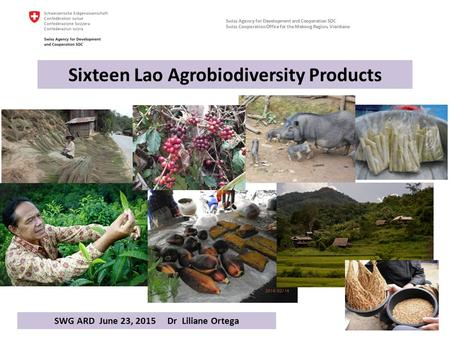 Swiss Agency for Development and Cooperation SDC Swiss Cooperation Office for the Mekong Region, Vientiane Sixteen Lao Agrobiodiversity Products 1 SWG.