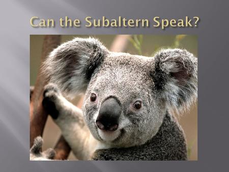  Subaltern refers to persons socially, politically, and geographically outside of the hegemonic power structure.  Subalterns are groups who have had.