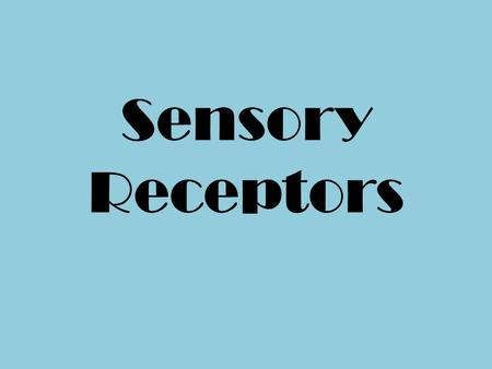 Sensory Receptors. Receptors There are millions of receptors all over the body. Receptors may be simple naked nerve endings, encapsulated nerve endings.