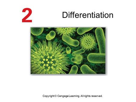 Differentiation Copyright © Cengage Learning. All rights reserved.