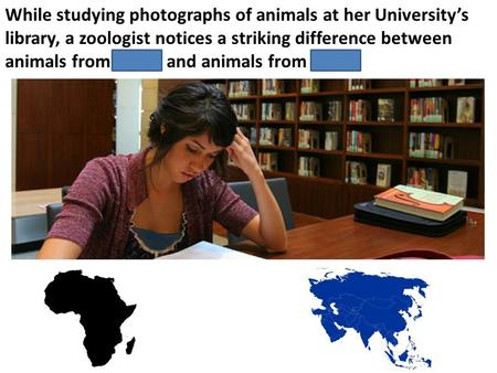 While studying photographs of animals at her University's library, a zoologist notices a striking difference between animals from Africa and animals from.