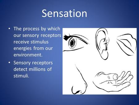 Sensation The process by which our sensory receptors receive stimulus energies from our environment. Sensory receptors detect millions of stimuli.