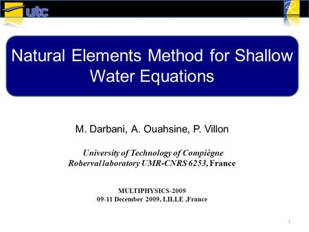 Natural Elements Method for Shallow Water Equations