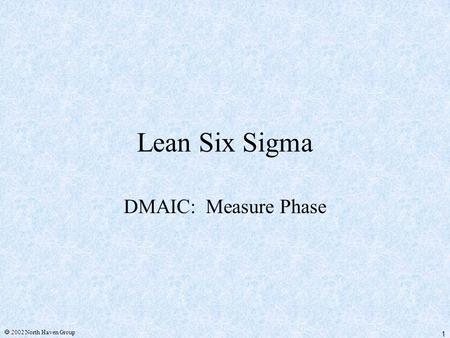 1  2002 North Haven Group Lean Six Sigma DMAIC: Measure Phase.