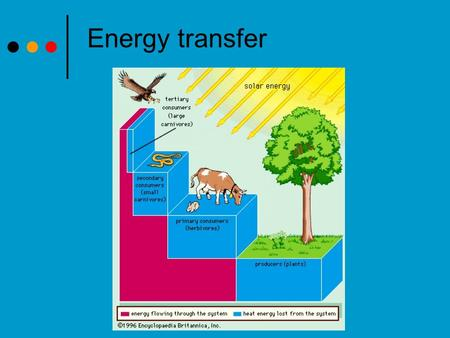 Energy transfer. Energy sources The sun provides almost all the energy to sustain life. Producers use Photosynthesis or Chemosythesis acquire the energy.