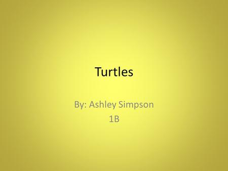 Turtles By: Ashley Simpson 1B. Habitat They live in shallow water Mostly found in Bays, Coastal waters, and lagoons Not found in the open ocean often.