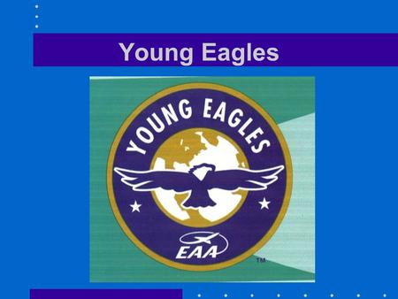 Young Eagles Presenters Steve Brady –FAA Flight Instructor –FAA Designated Pilot Examiner –Aviation Safety Counselor –FAA Production Crew –Flight Instructor.