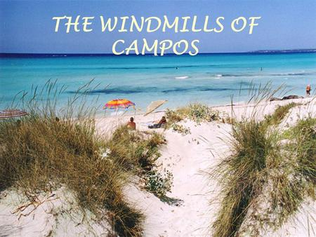 THE WINDMILLS OF CAMPOS. Wind, animal traction an waterwheel mills can be dind in many lozations of the islands. Actually, they have lost their initial.